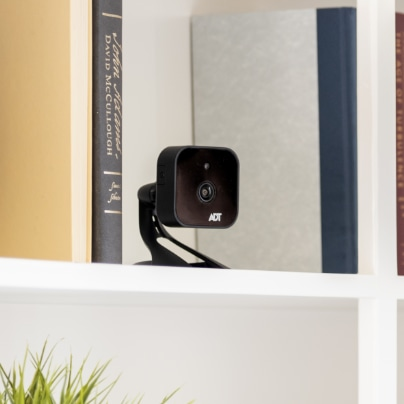 Buffalo indoor security camera
